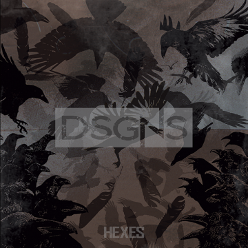dsgns hexes